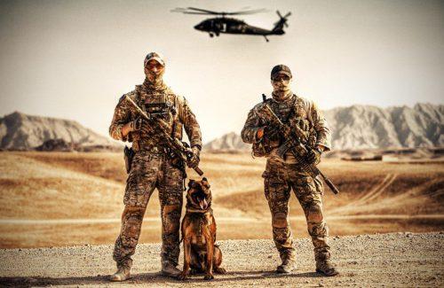 Наемники с собакой