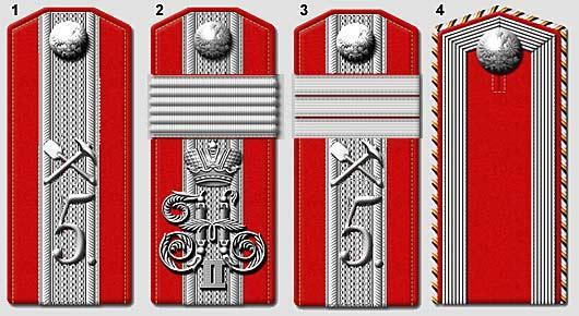 Отличительные знаки высших офицерских чинов