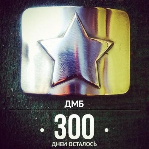 Отметка в 300 дней