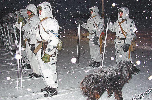 Солдаты на лыжах