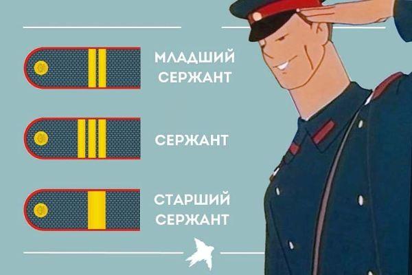 В полиции такая же иерархия