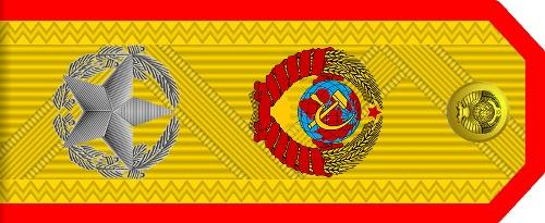 Погоны с гербом и звездой